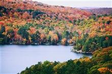 Nghẹt thở vì mùa thu tuyệt đẹp ở rừng phong tại Canada