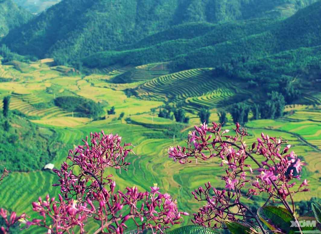 Cung-duong-xuyen-Dong-Tay-Bac-dep-nhat-Viet-Nam.jpg