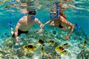 Top 5 địa điểm lặn biển không thể bỏ qua ở Việt Nam